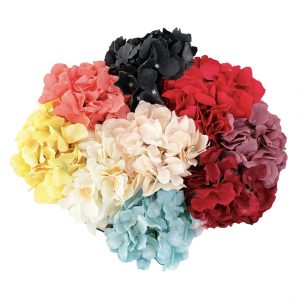 Colores de flores